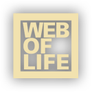 Web of Life